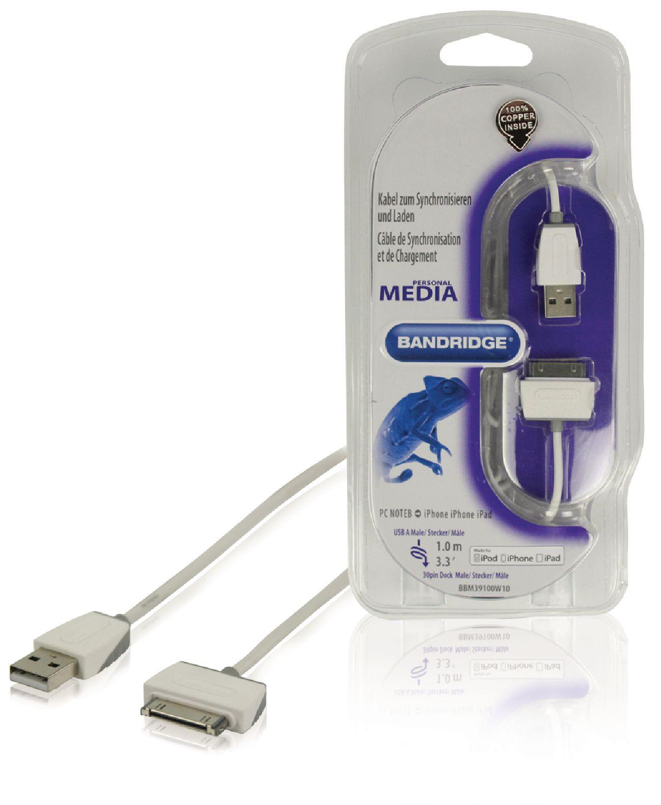 Bandridge Cable de carga y sincronización